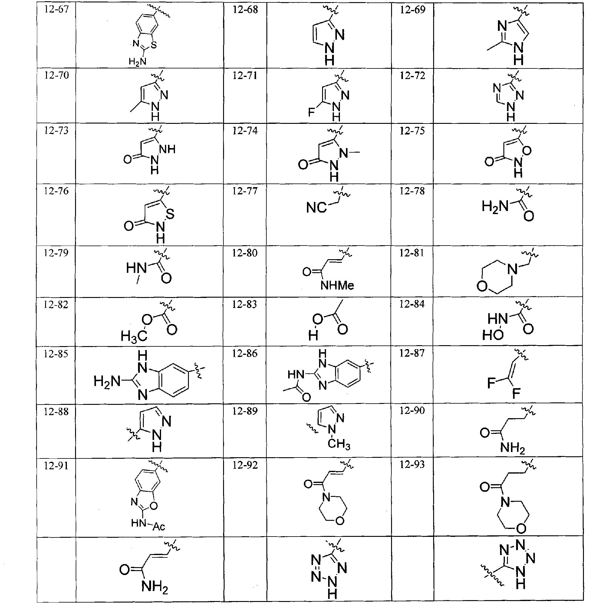 Figure CN101965335BD00493