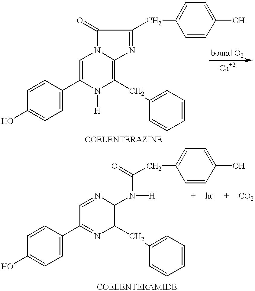 Figure US06232107-20010515-C00004