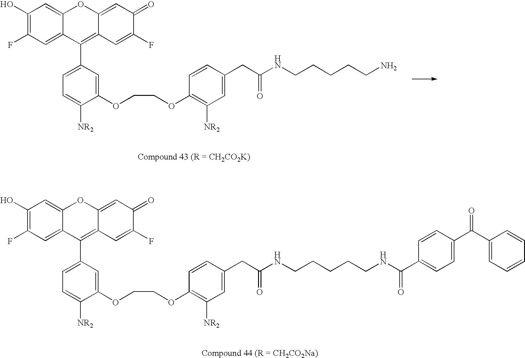 Figure US07776533-20100817-C00040