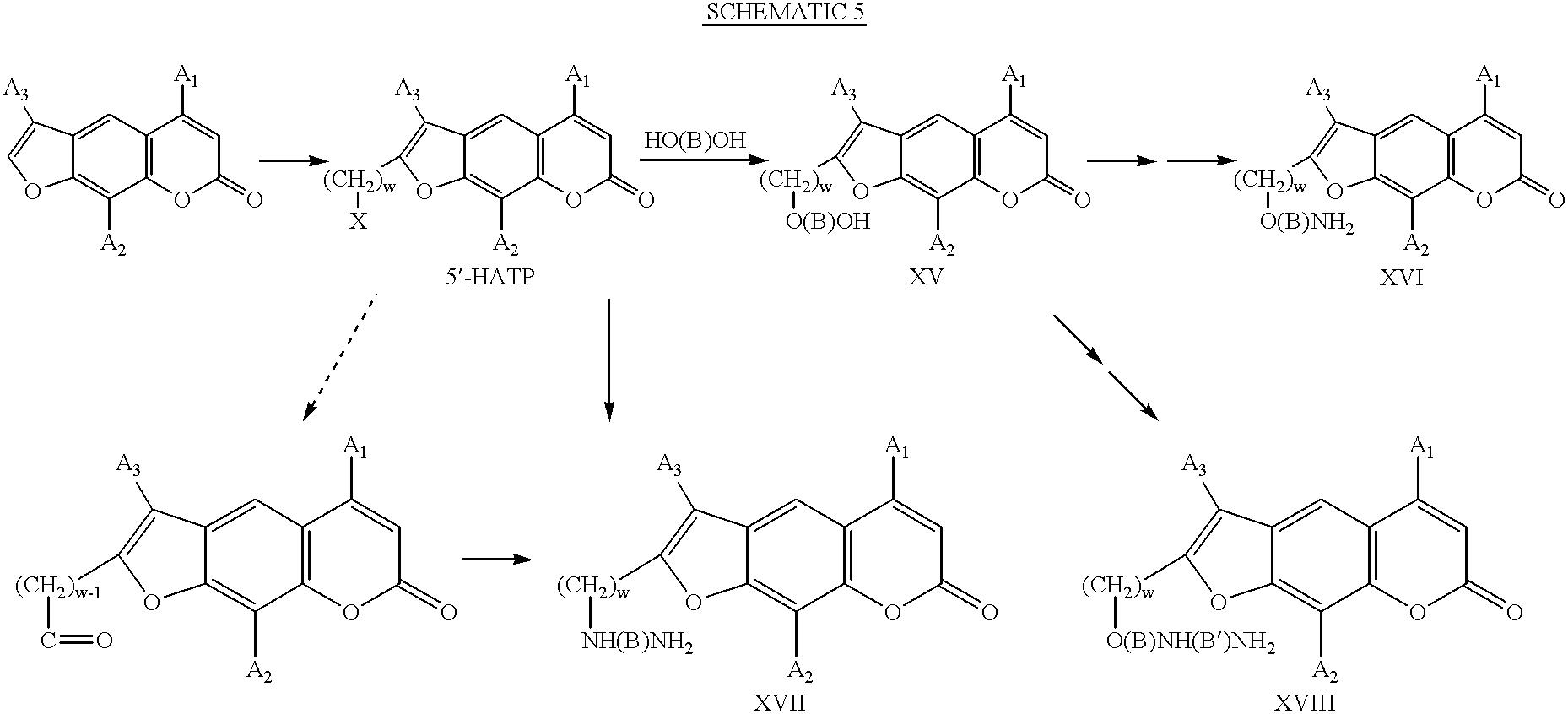 Figure US06469052-20021022-C00007