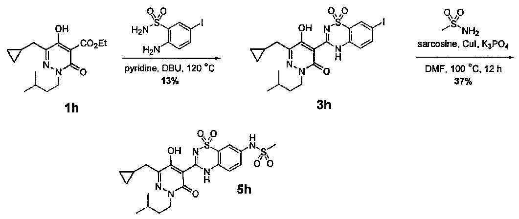 WO2008082725A1 - Pyridazinone compounds - Google Patents