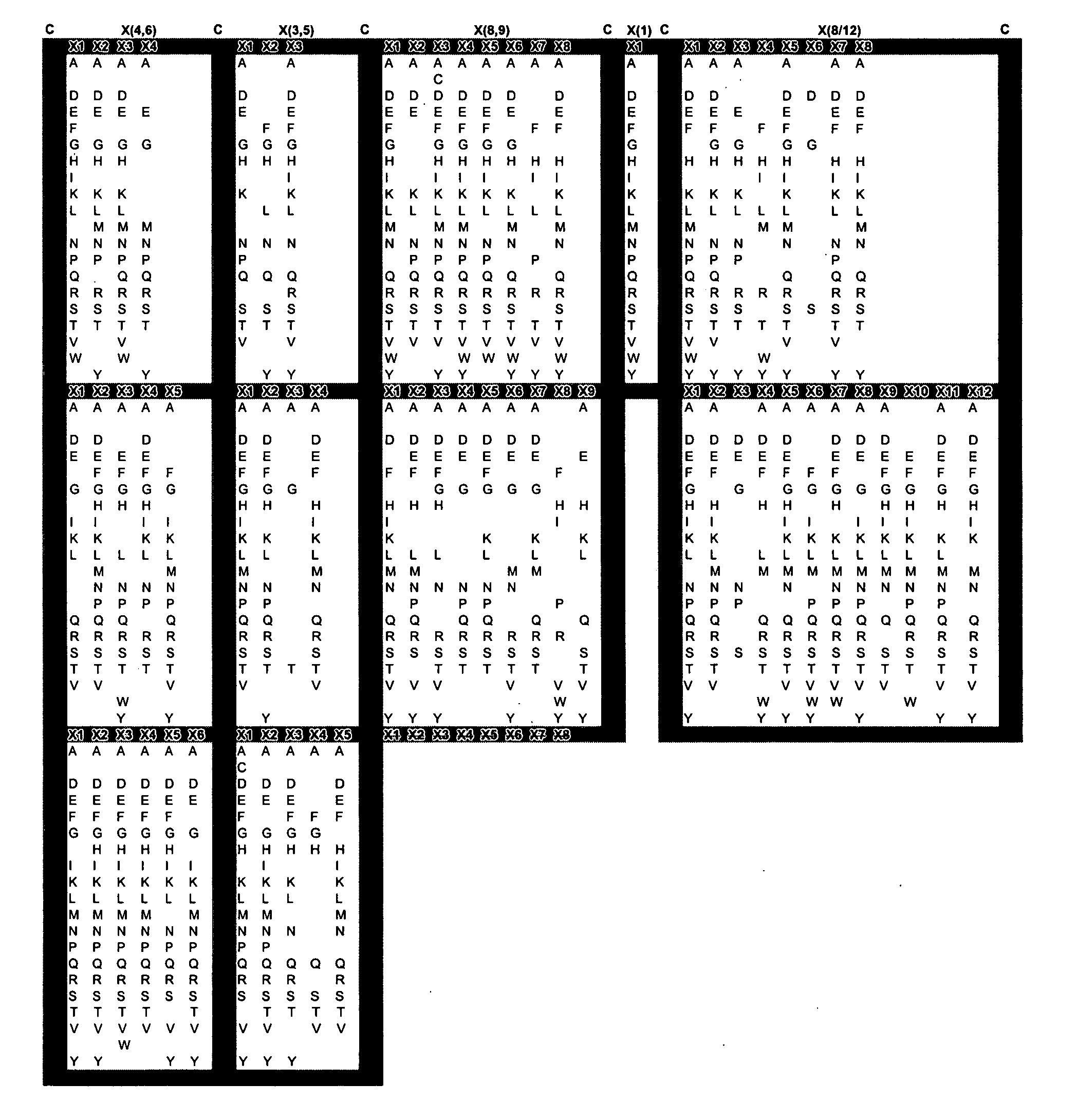 Figure US20050053973A1-20050310-P00004