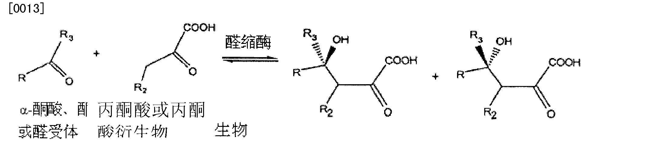 Figure CN101437954BD00041