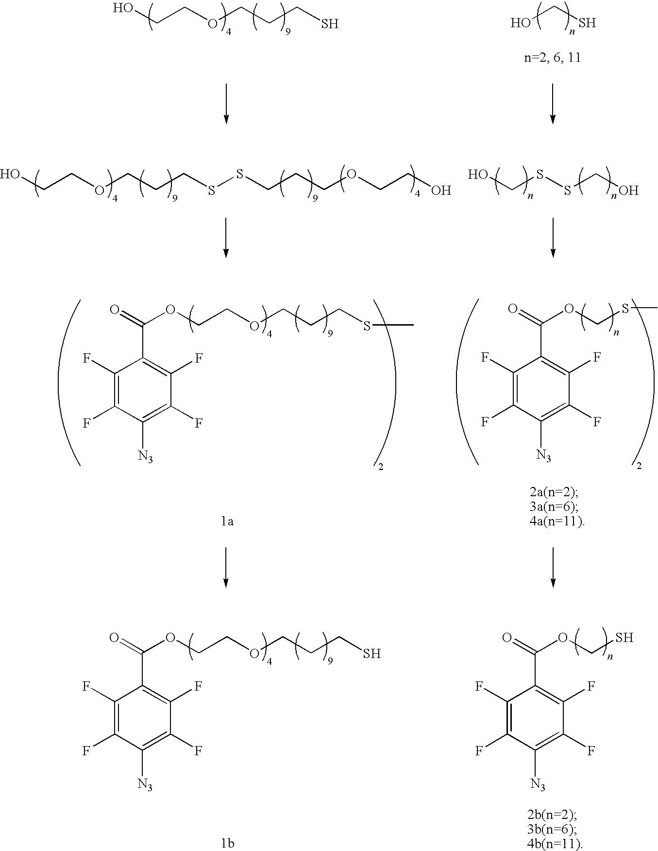 Figure US20100028559A1-20100204-C00041