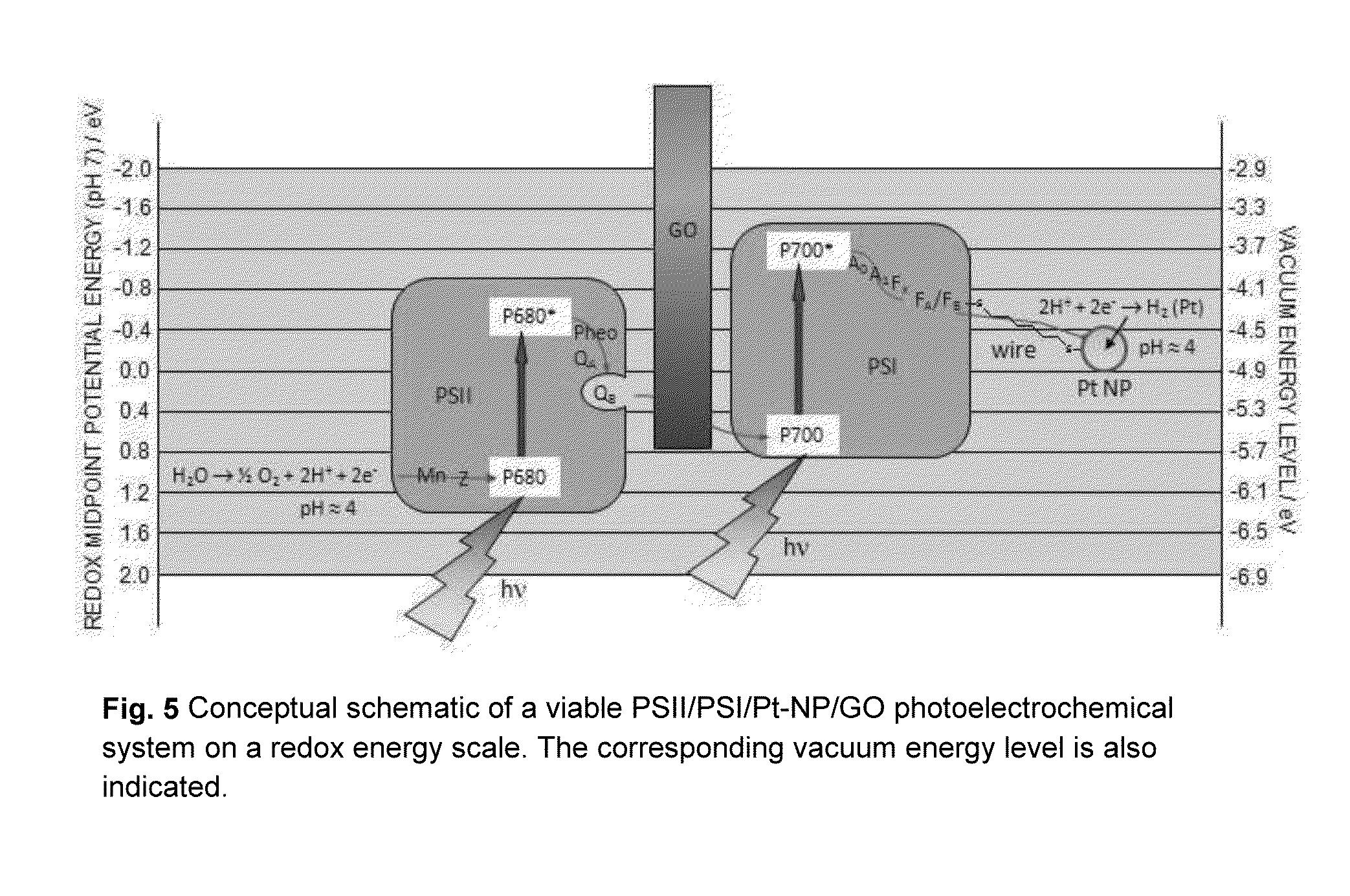 niepokonany x szczegółowe zdjęcia strona internetowa ze zniżką US20140154770A1 - Chemically Modified Graphene - Google Patents