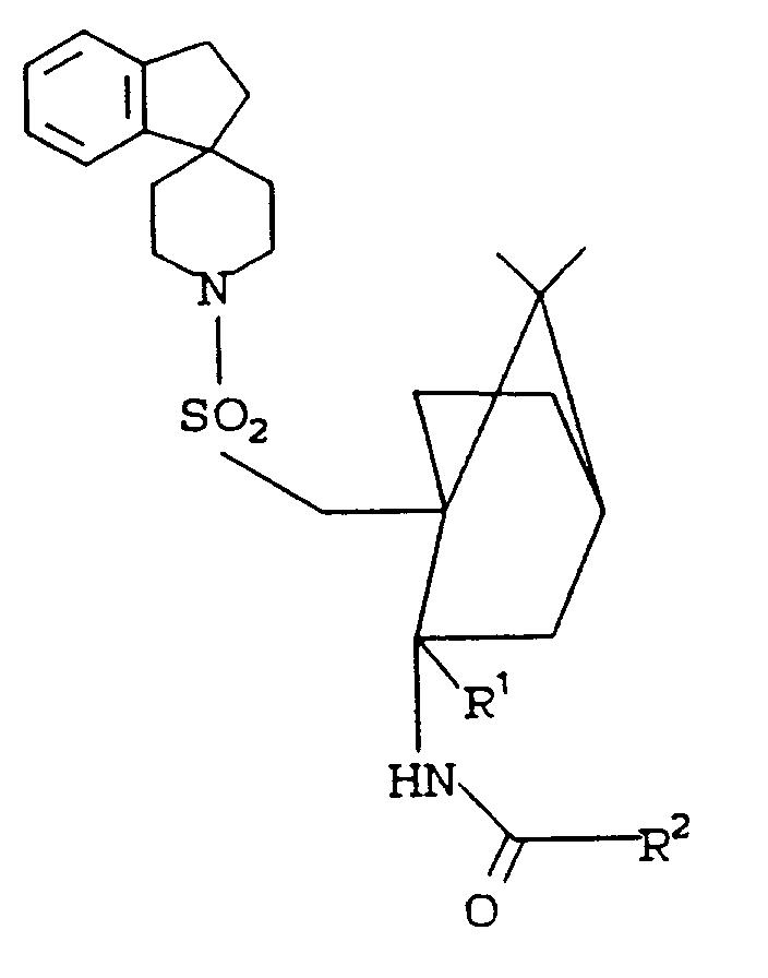 Ep0533244a1