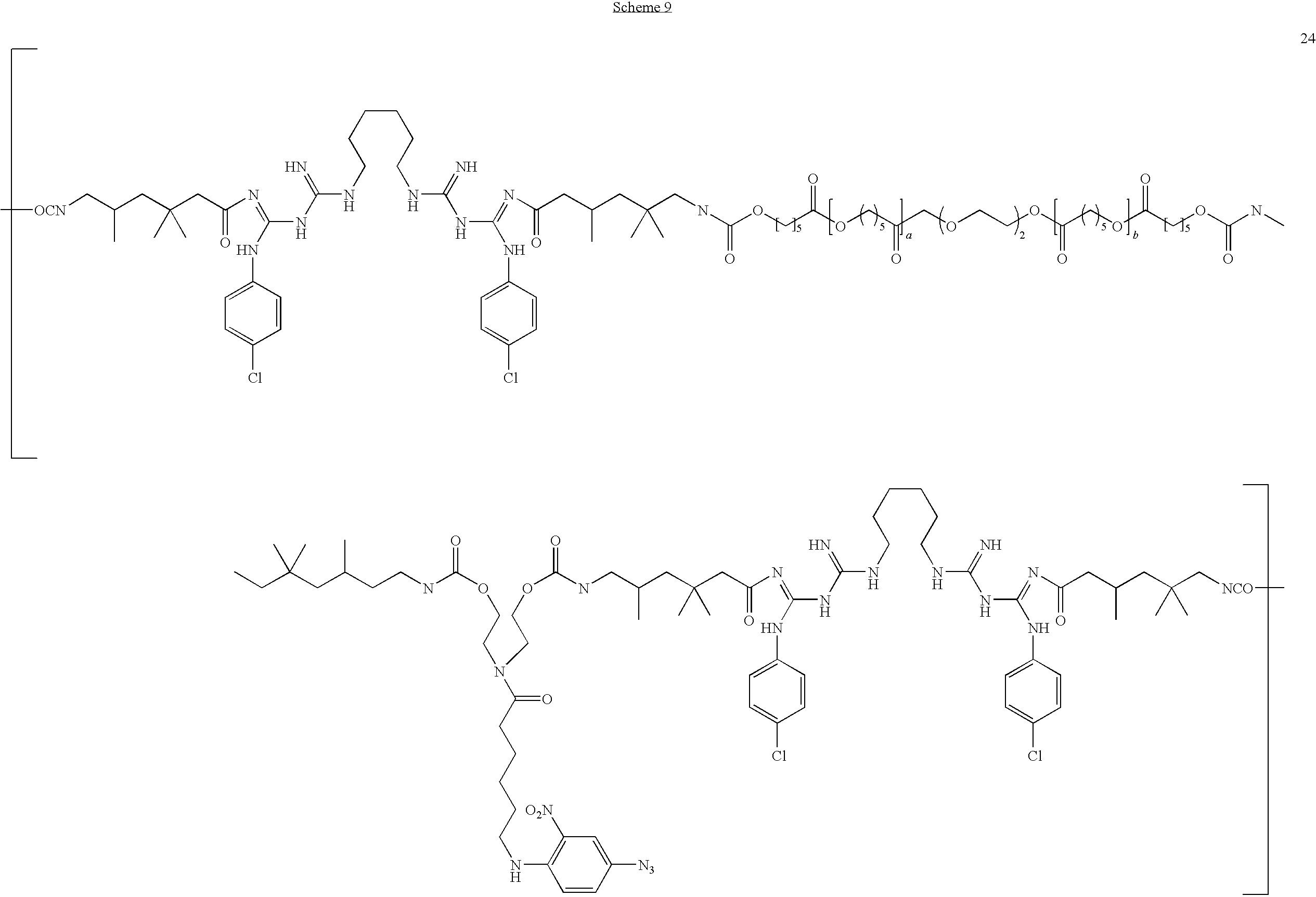 Figure US20100034862A1-20100211-C00031