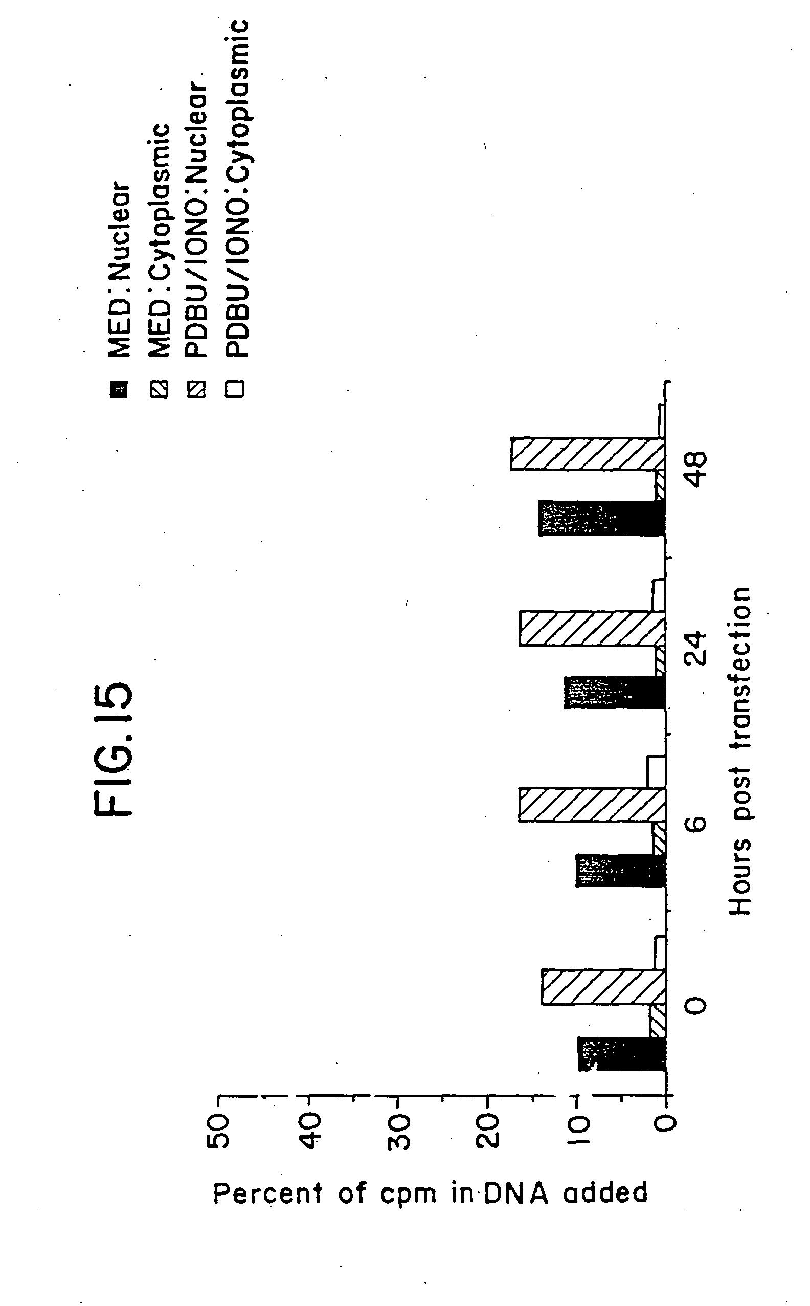 A prostatitis ru kezelése