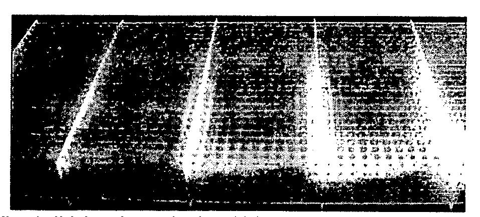 Figure 112011020735991-pct00019
