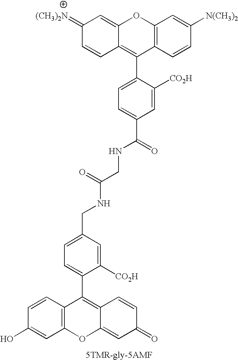 Figure US20070154926A1-20070705-C00118