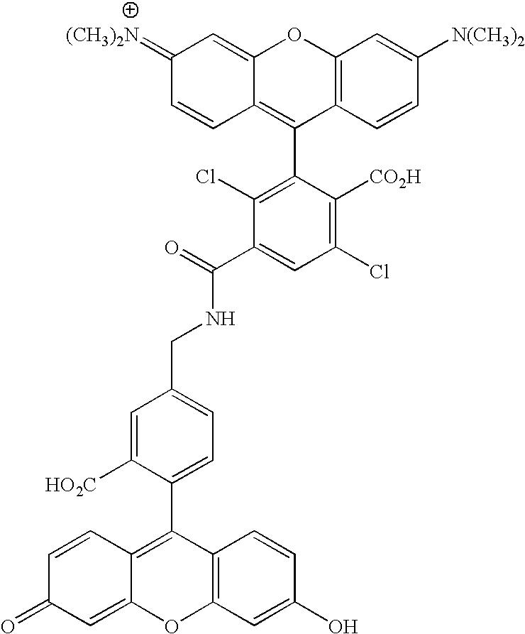 Figure US20070154926A1-20070705-C00095