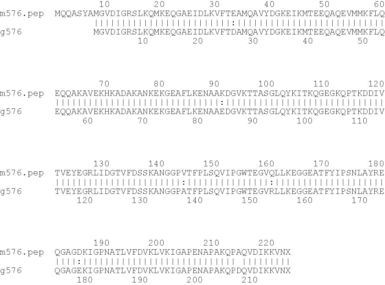 Figure US07576176-20090818-C00007