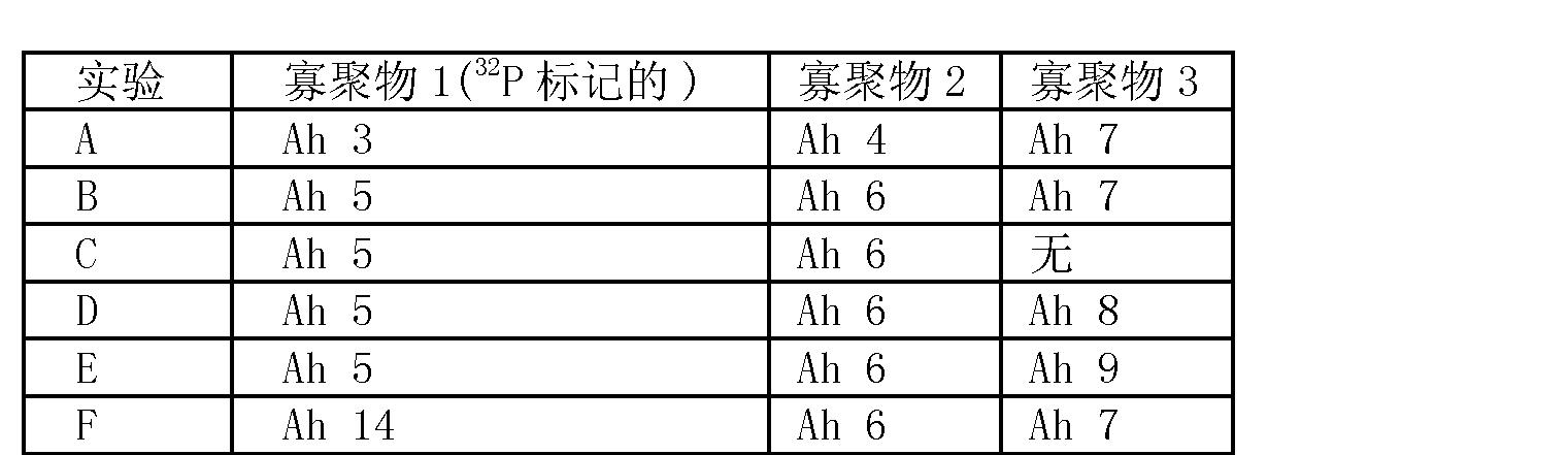 Figure CN101006177BD00361