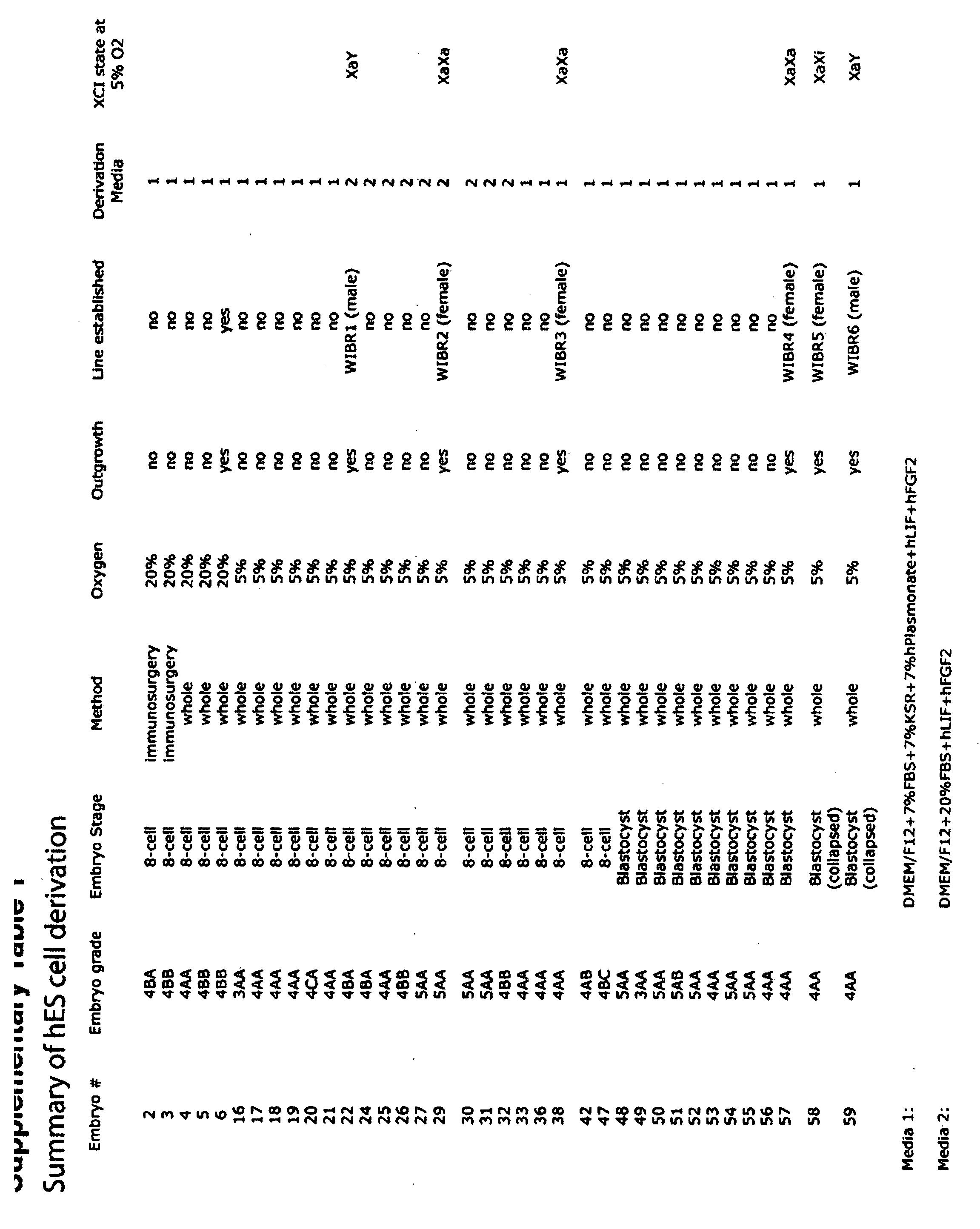 WO2011142832A2 - Stem cells derived under low oxygen