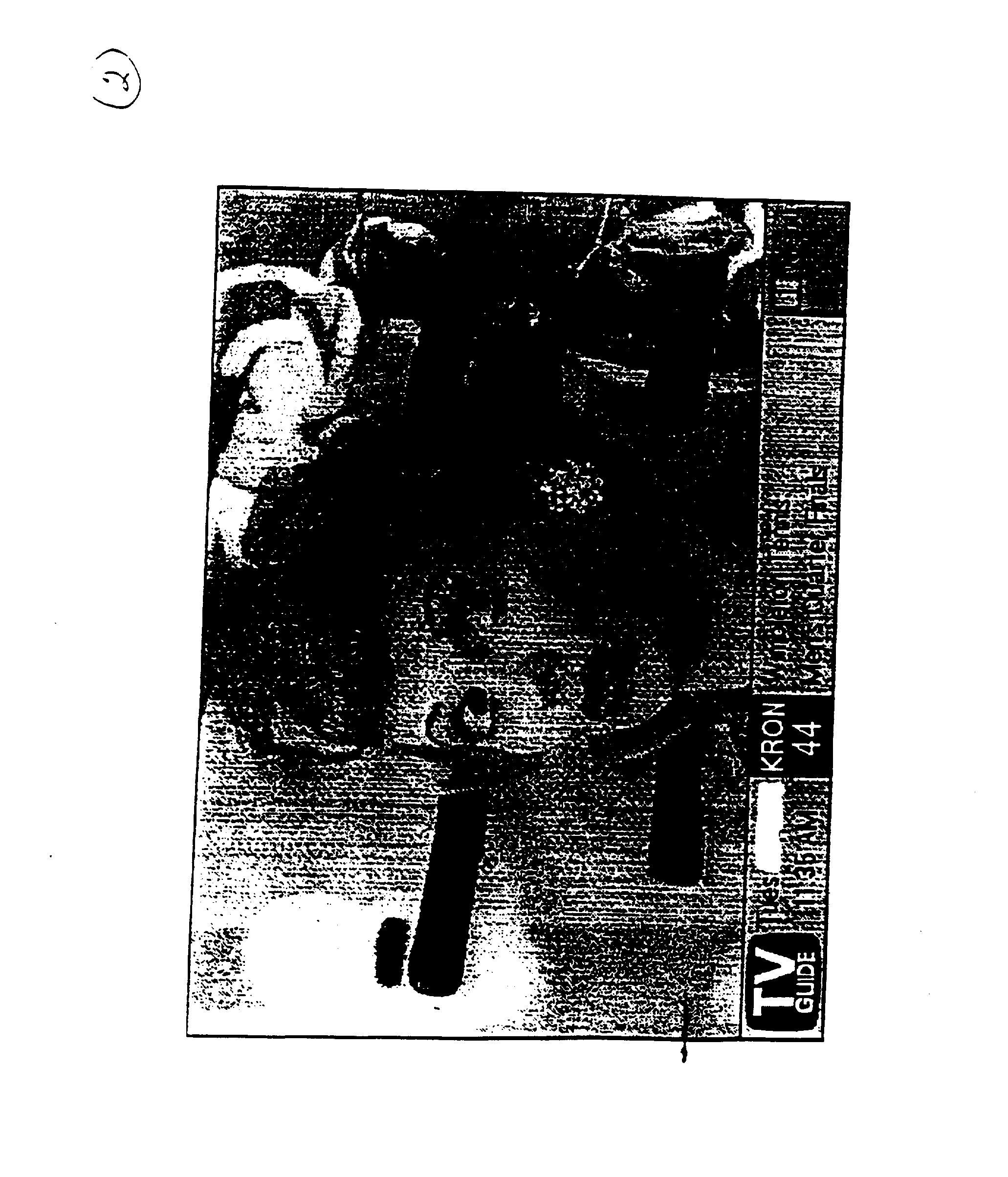 Figure US20030115599A1-20030619-P00010