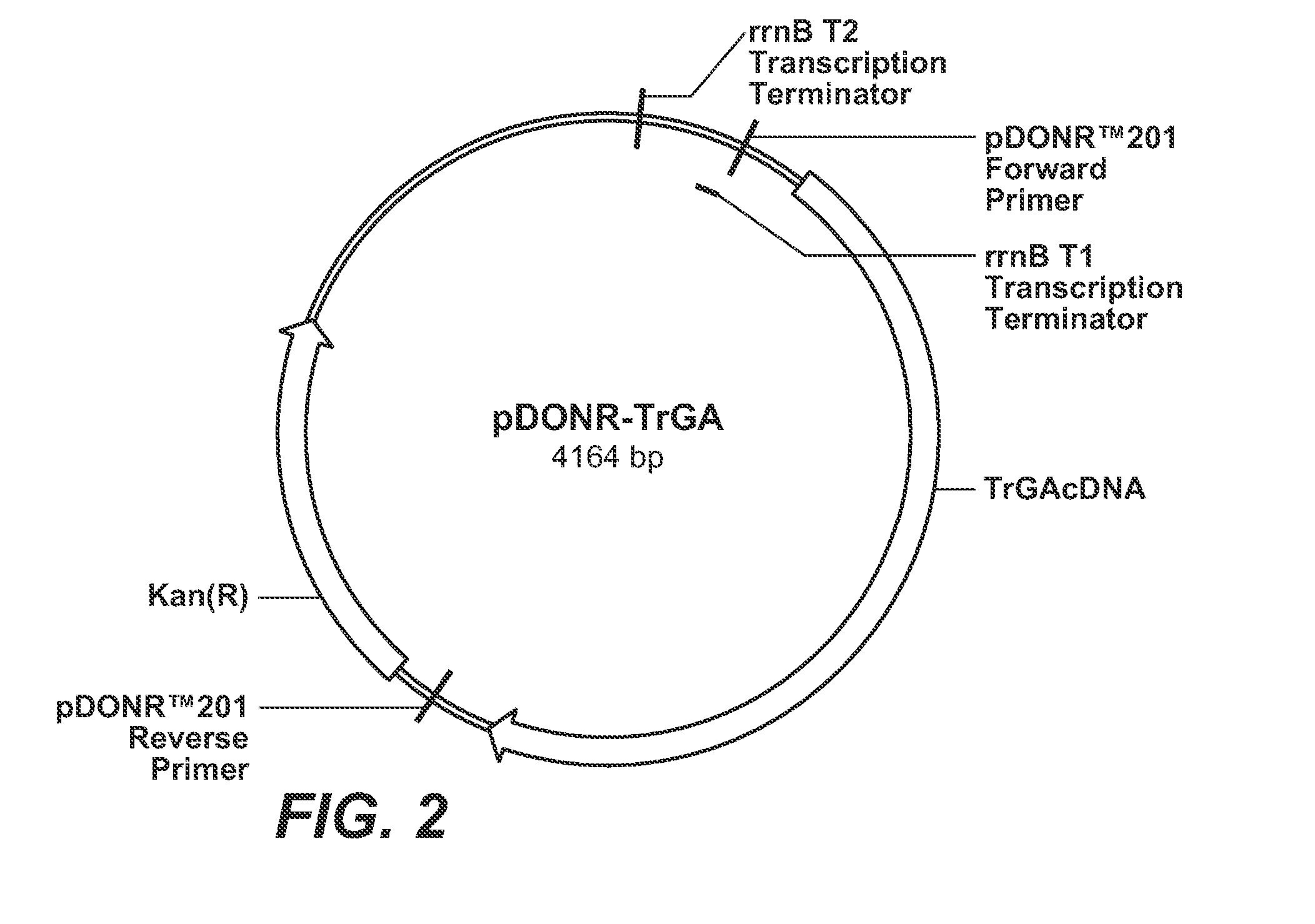 Onan Generator Wiring Diagram 611 1180. Onan Generator ... on
