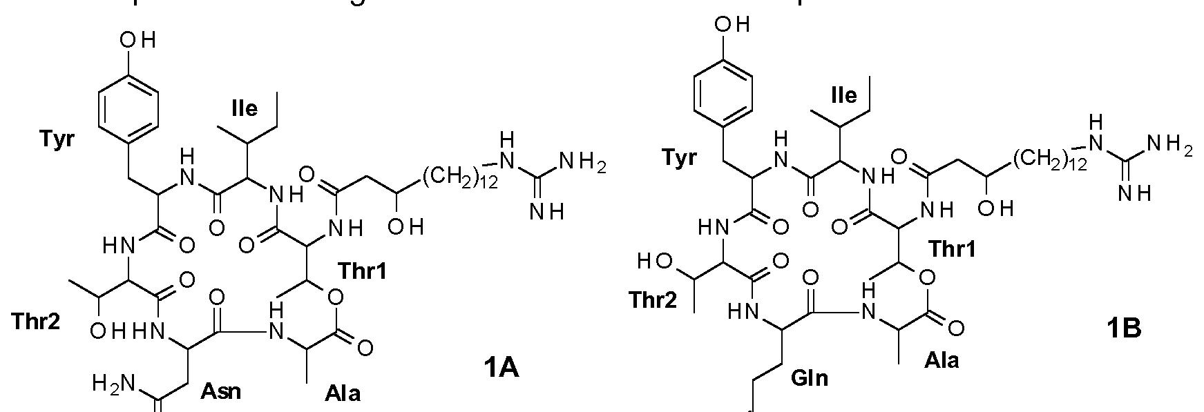 WO2016020371A1 - Antifungal paenibacillus strains, fusaricidin-type