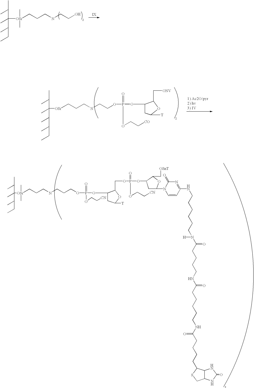 Figure US20030003475A1-20030102-C00017