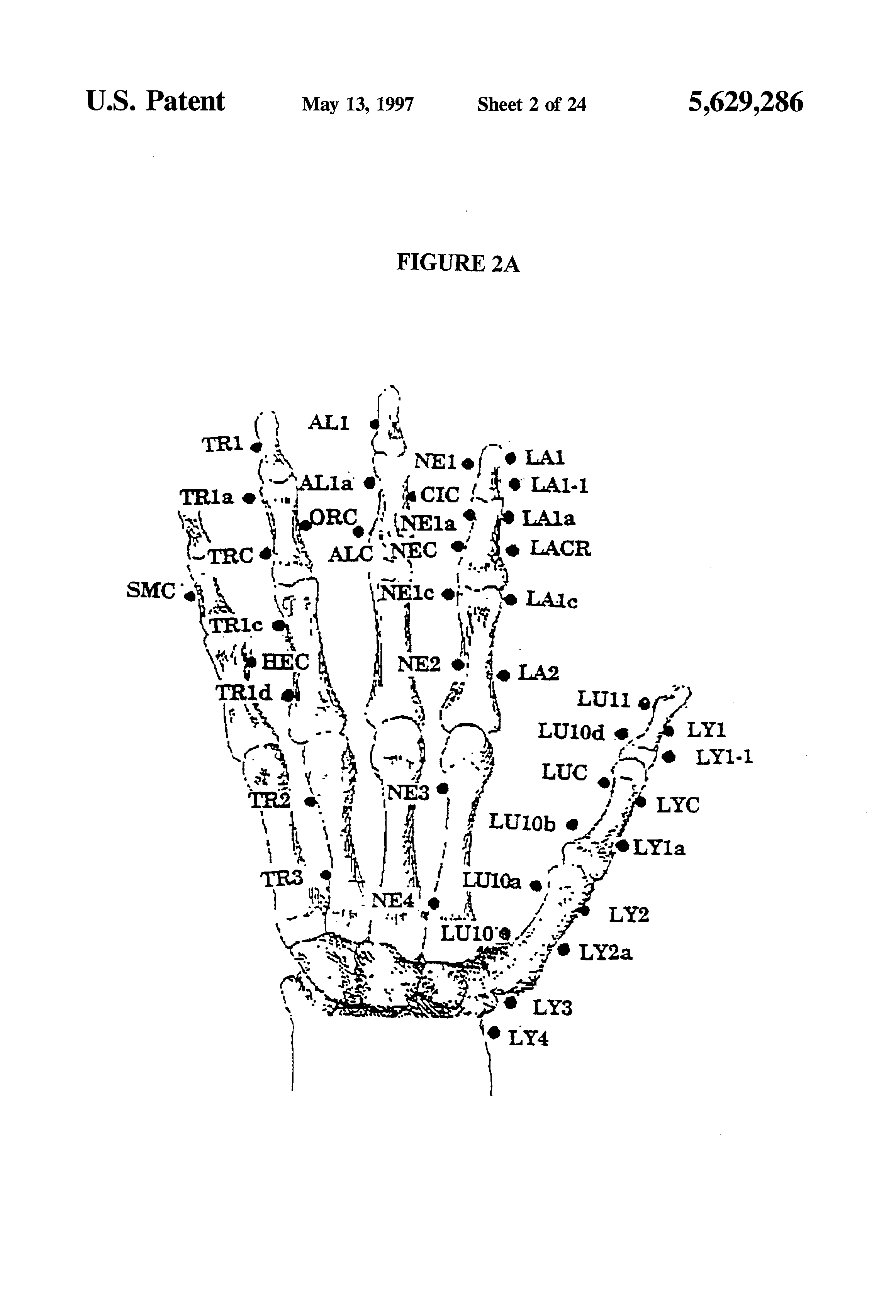 US5629286A - Homeopathic dilutions of growth factors