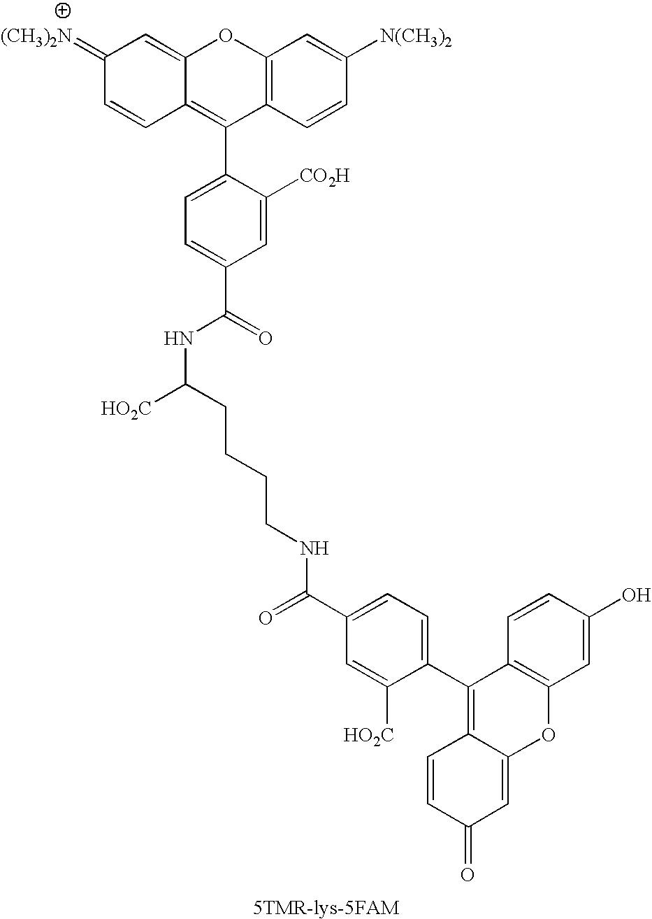 Figure US20070154926A1-20070705-C00120