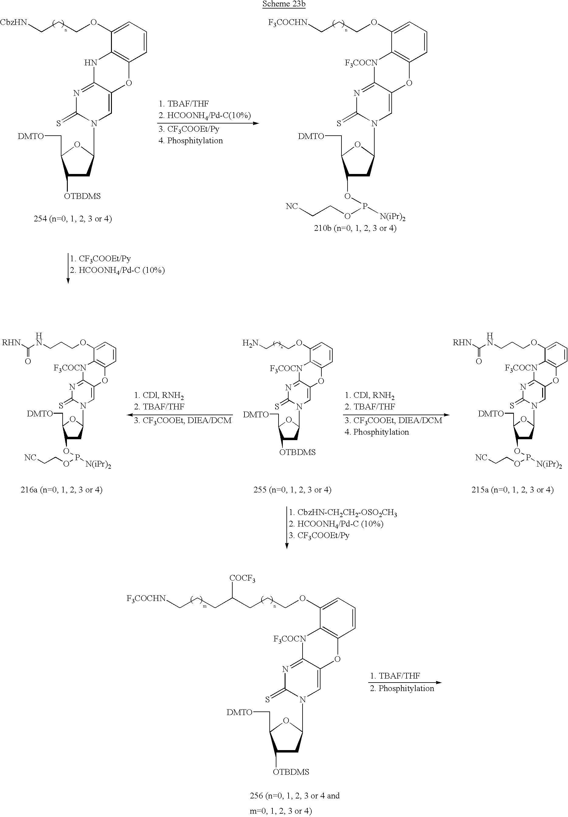 Figure US20030158403A1-20030821-C00051