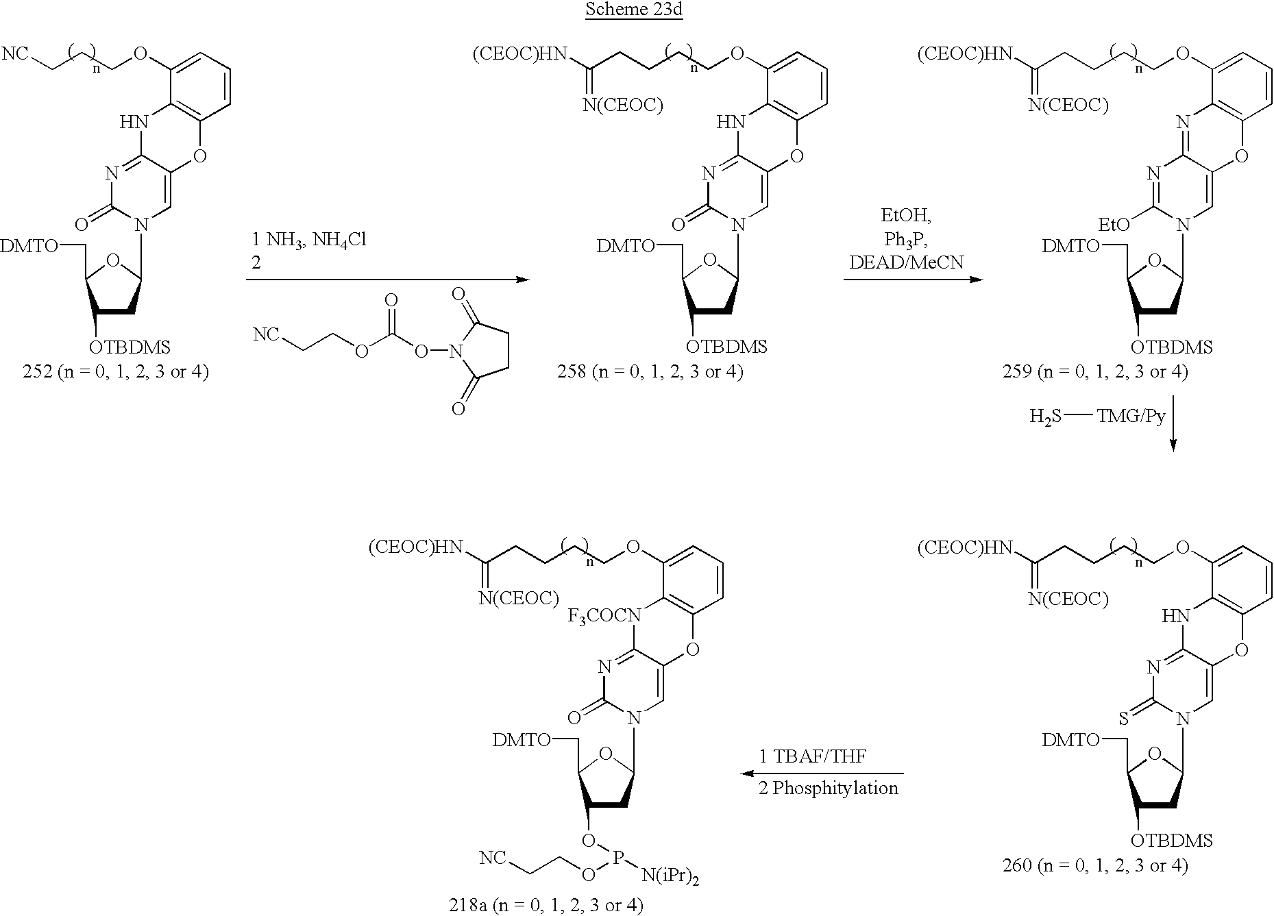 Figure US20030175906A1-20030918-C00051