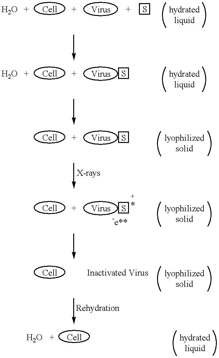 Figure US06187572-20010213-C00003