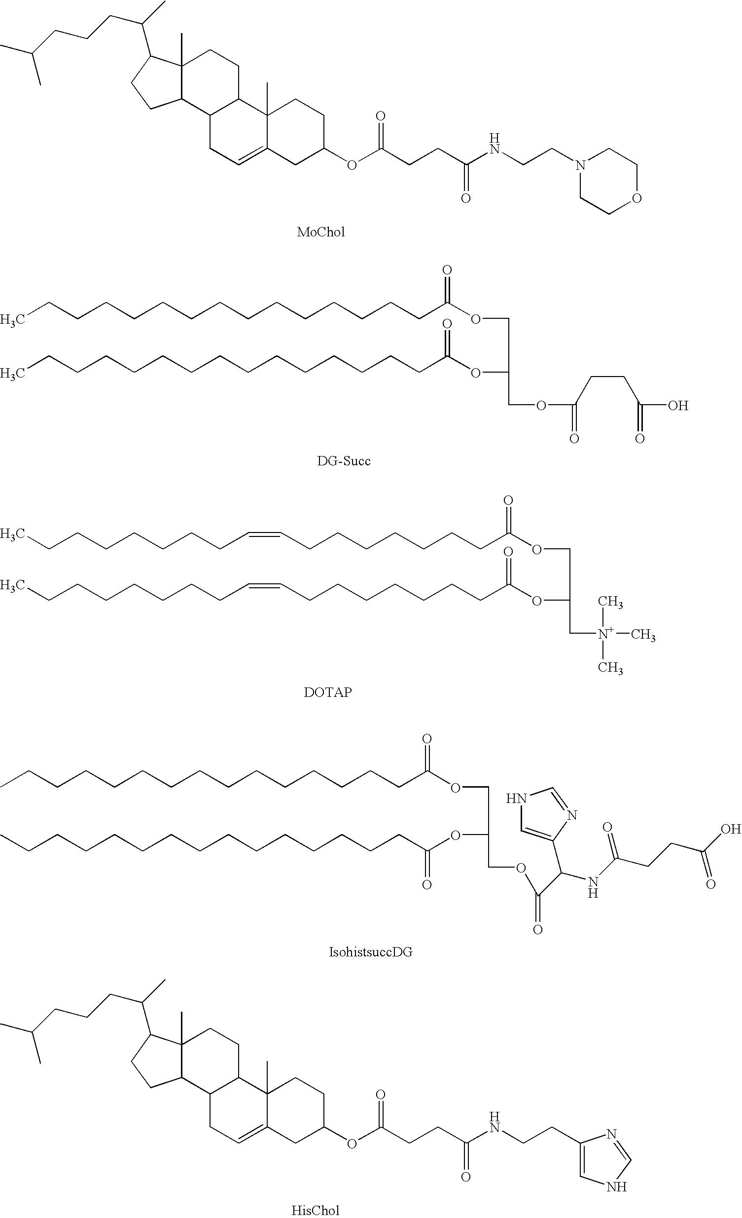 US8367628B2 - Amphoteric liposome formulation - Google Patents