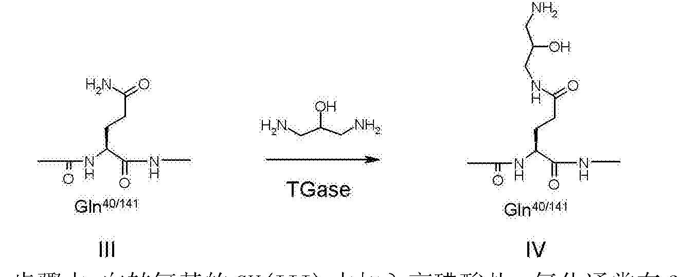 Figure CN103002918BD01241