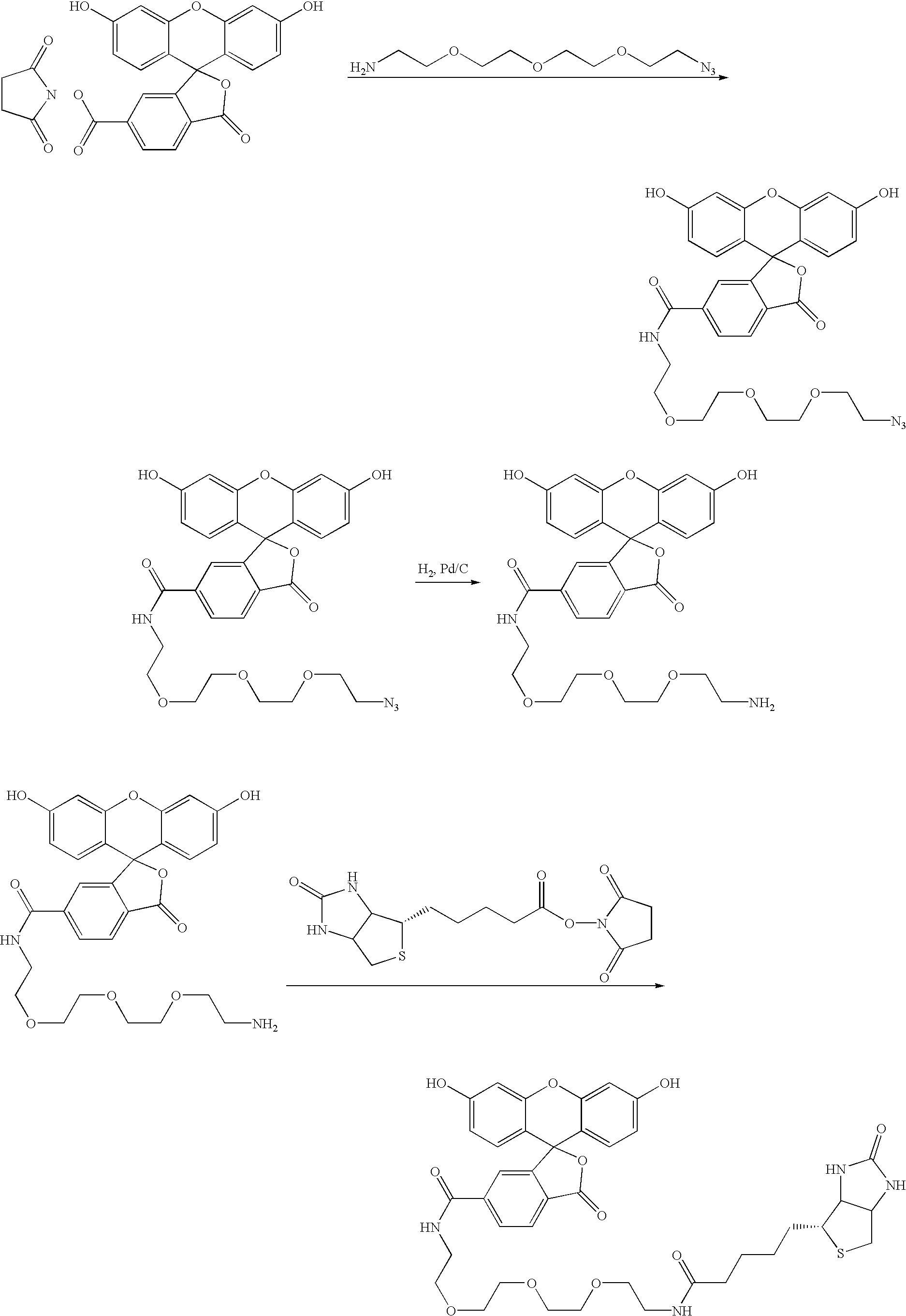 Figure US20030049841A1-20030313-C00001