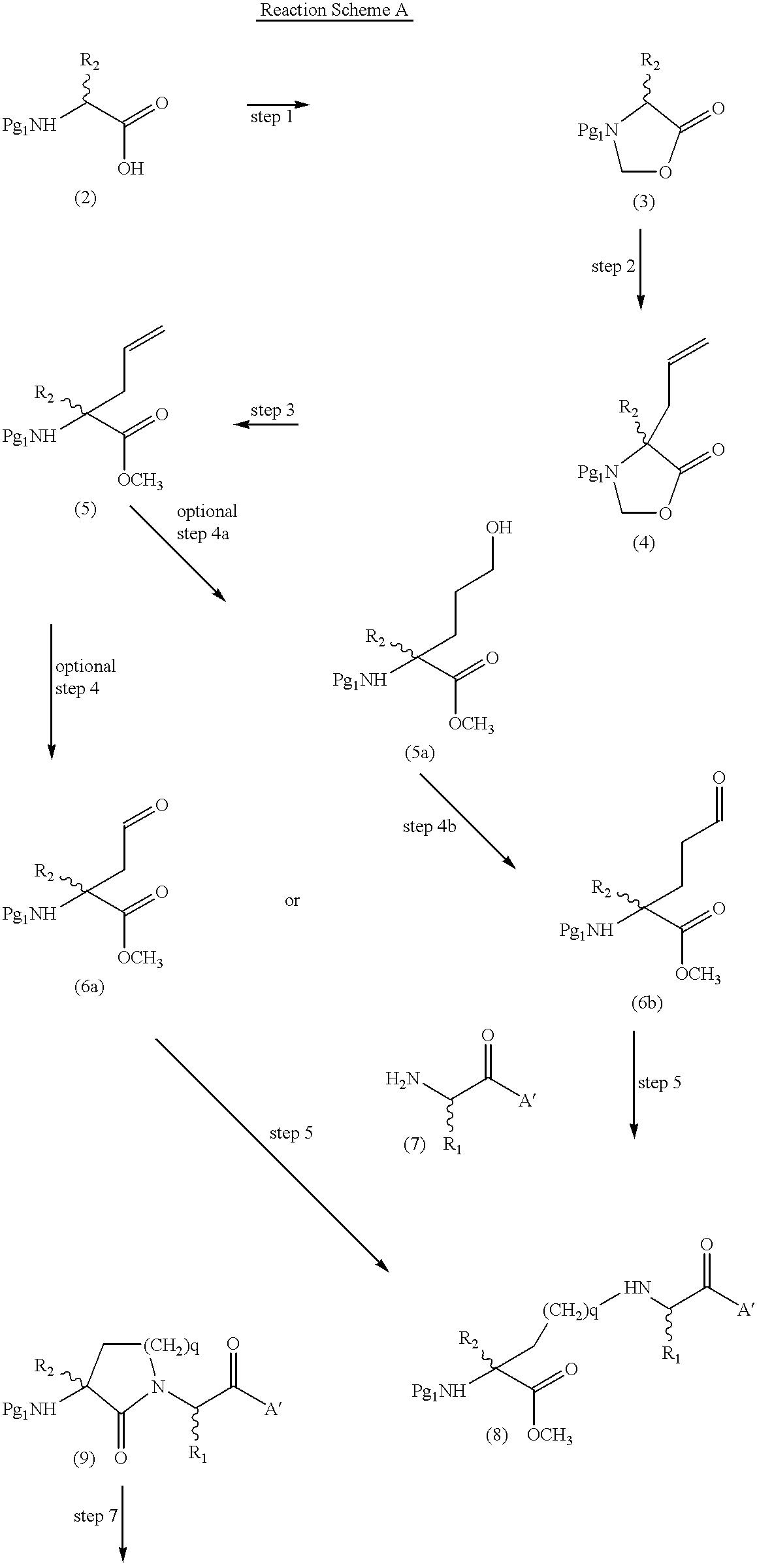 Figure US06262080-20010717-C00013