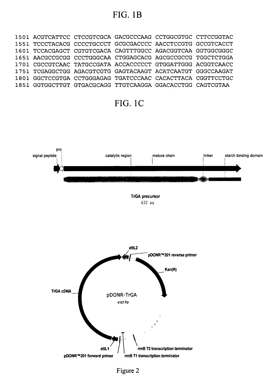 P023f