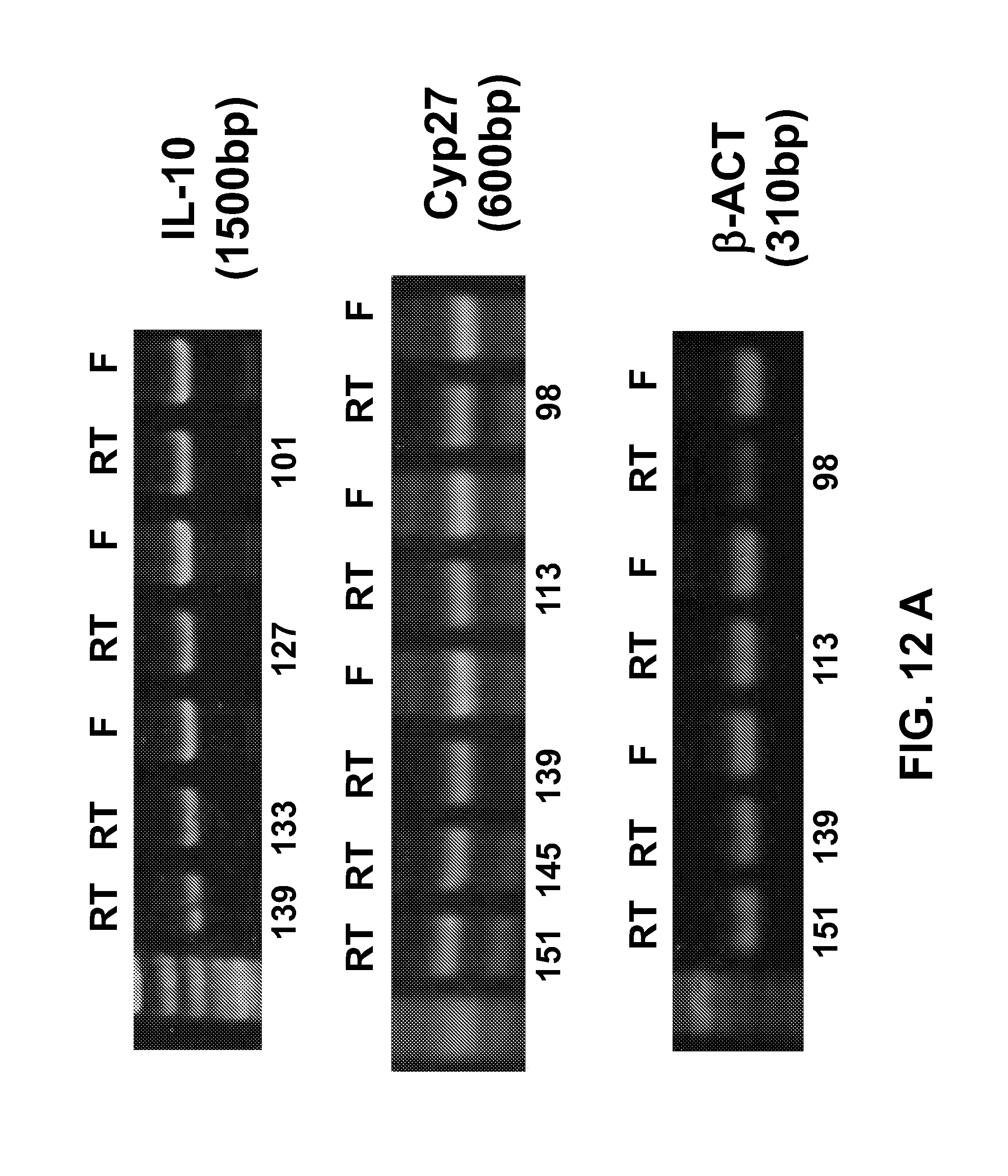 US20130273531A1 - Ambient temperature stable kits for