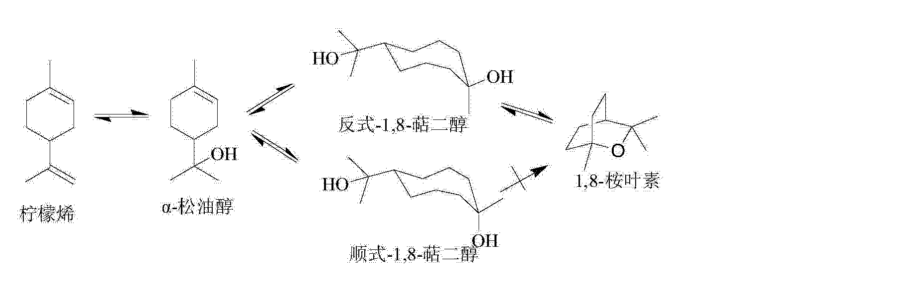 1 8 cineole synthesis