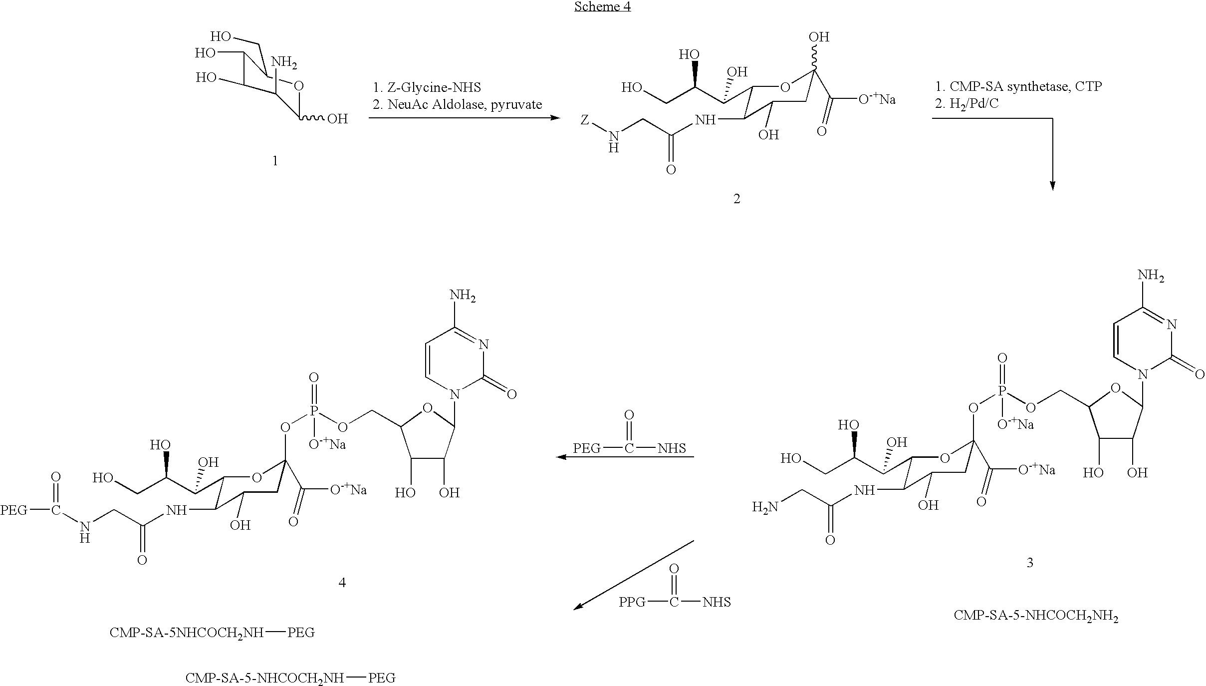 Figure US20040115168A1-20040617-C00092