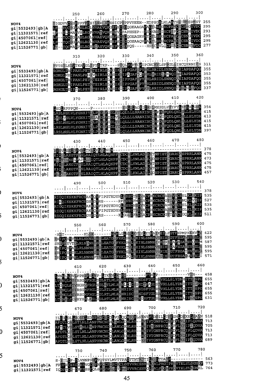 Figure US20030204052A1-20031030-P00019