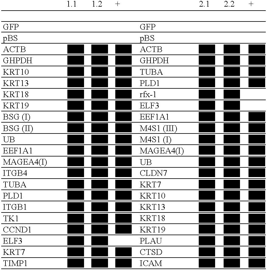 Figure US07229760-20070612-C00001