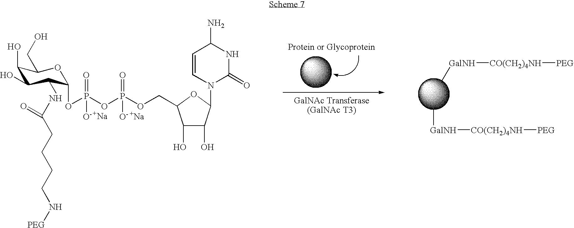 Figure US07338933-20080304-C00047