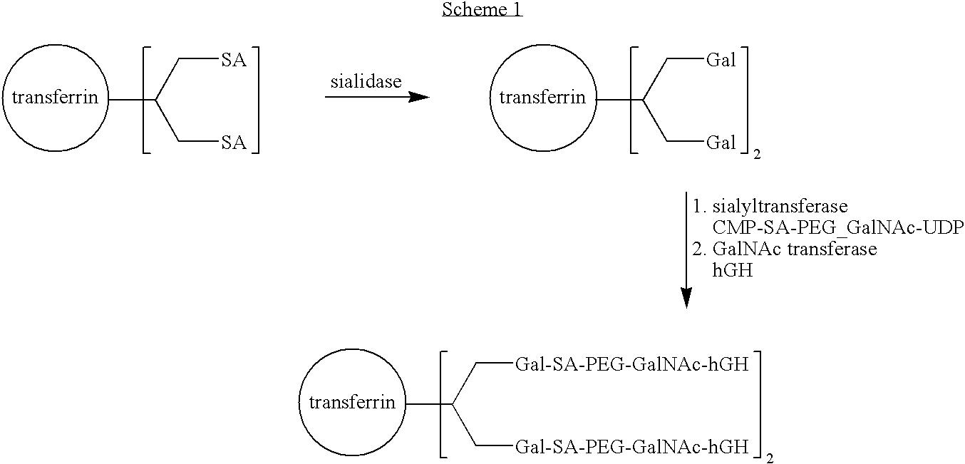 Figure US07932364-20110426-C00002