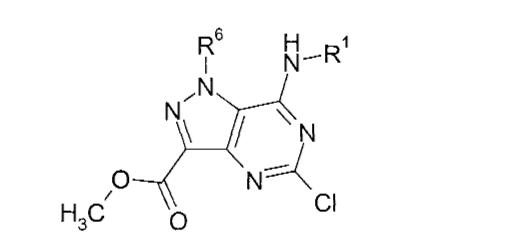 Figure CN101362765BD00672