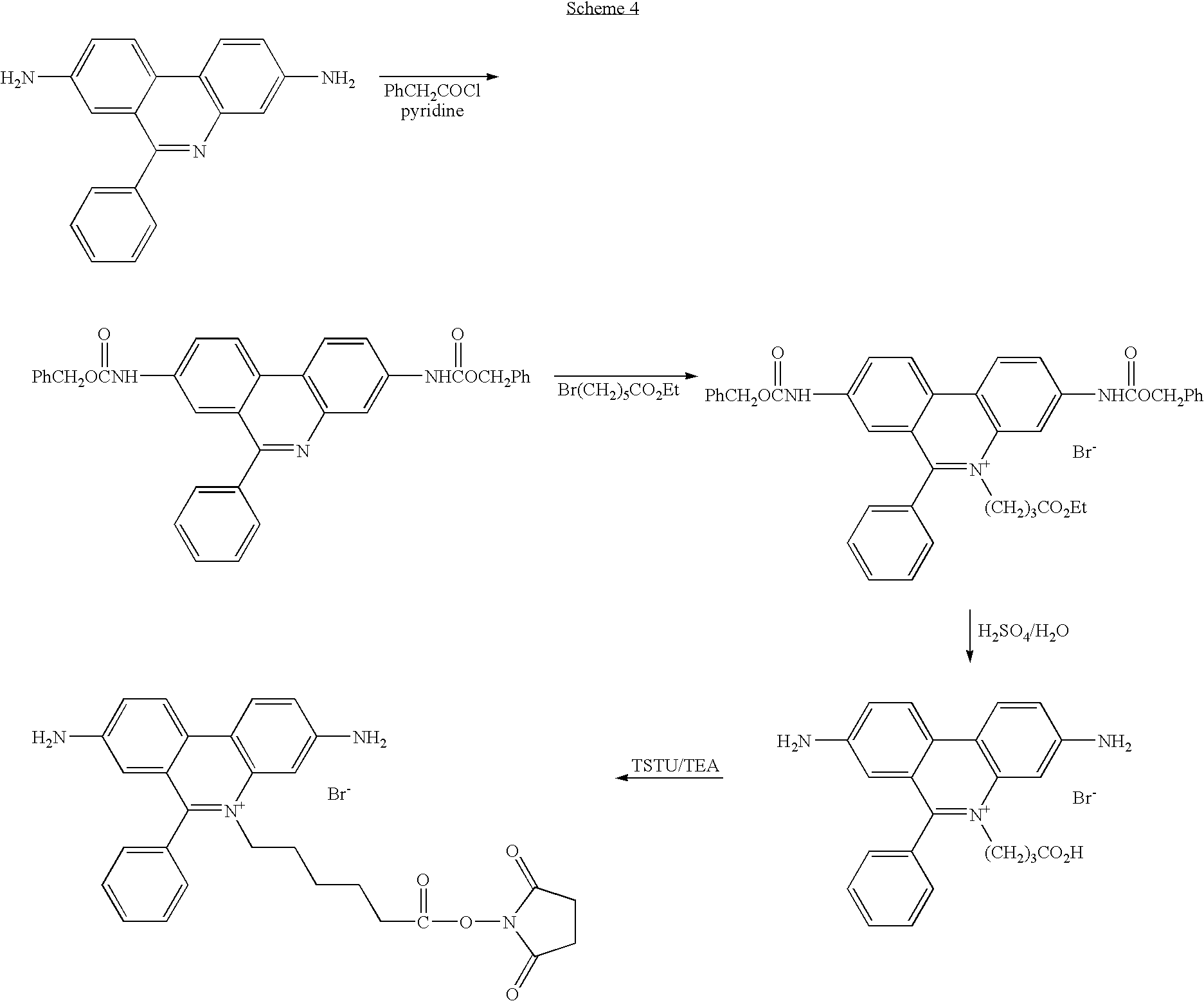 Figure US20060211028A1-20060921-C00062