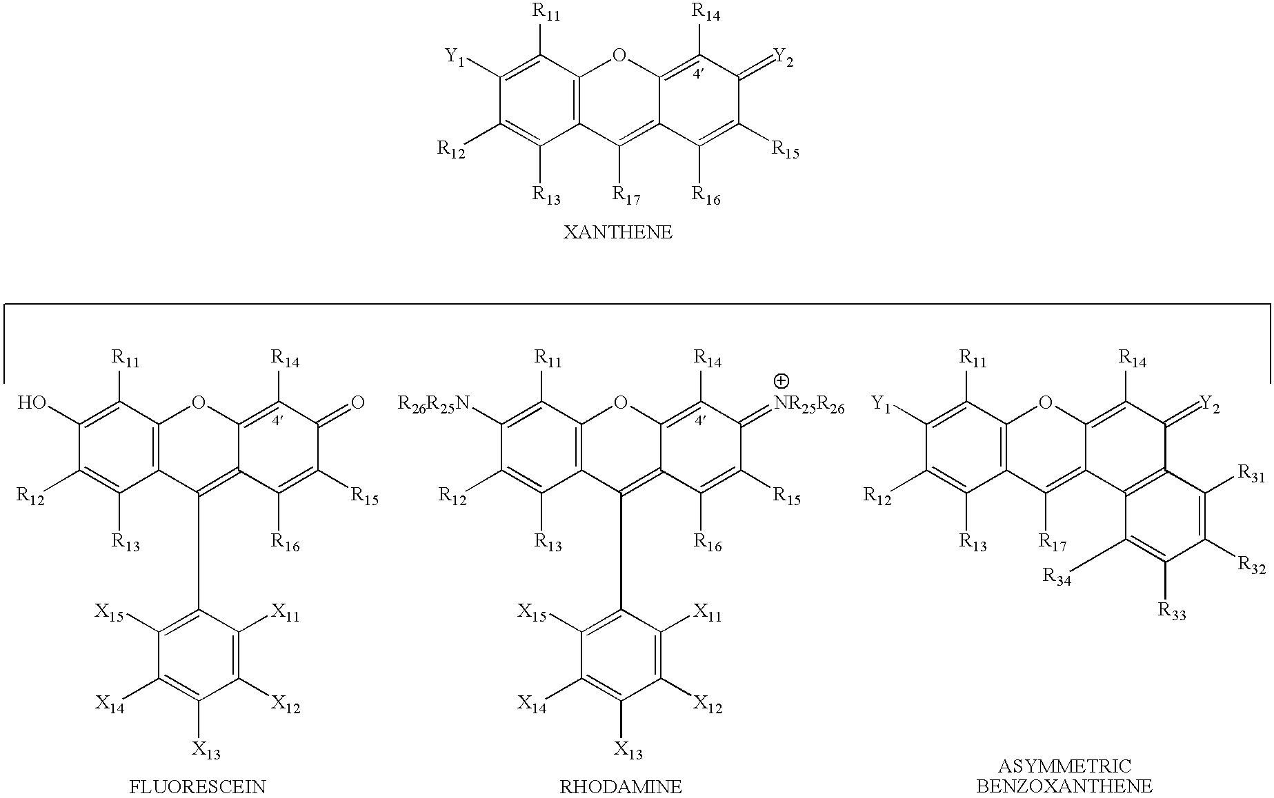 Figure US20070154926A1-20070705-C00028