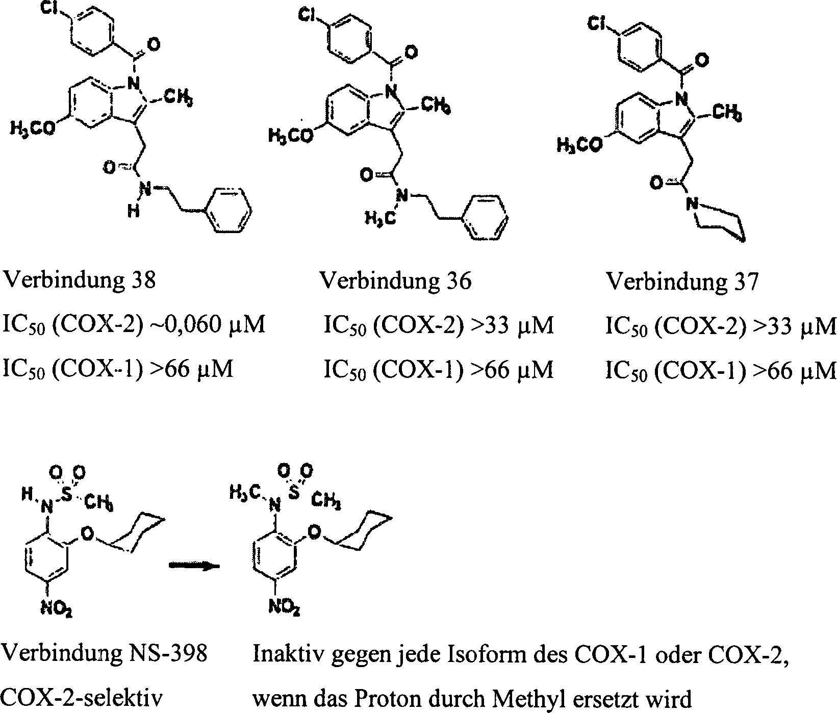 DE10254785A1 - Kombination ausgewählter Analgetika mit COX II-Inhibitoren - Google Patents