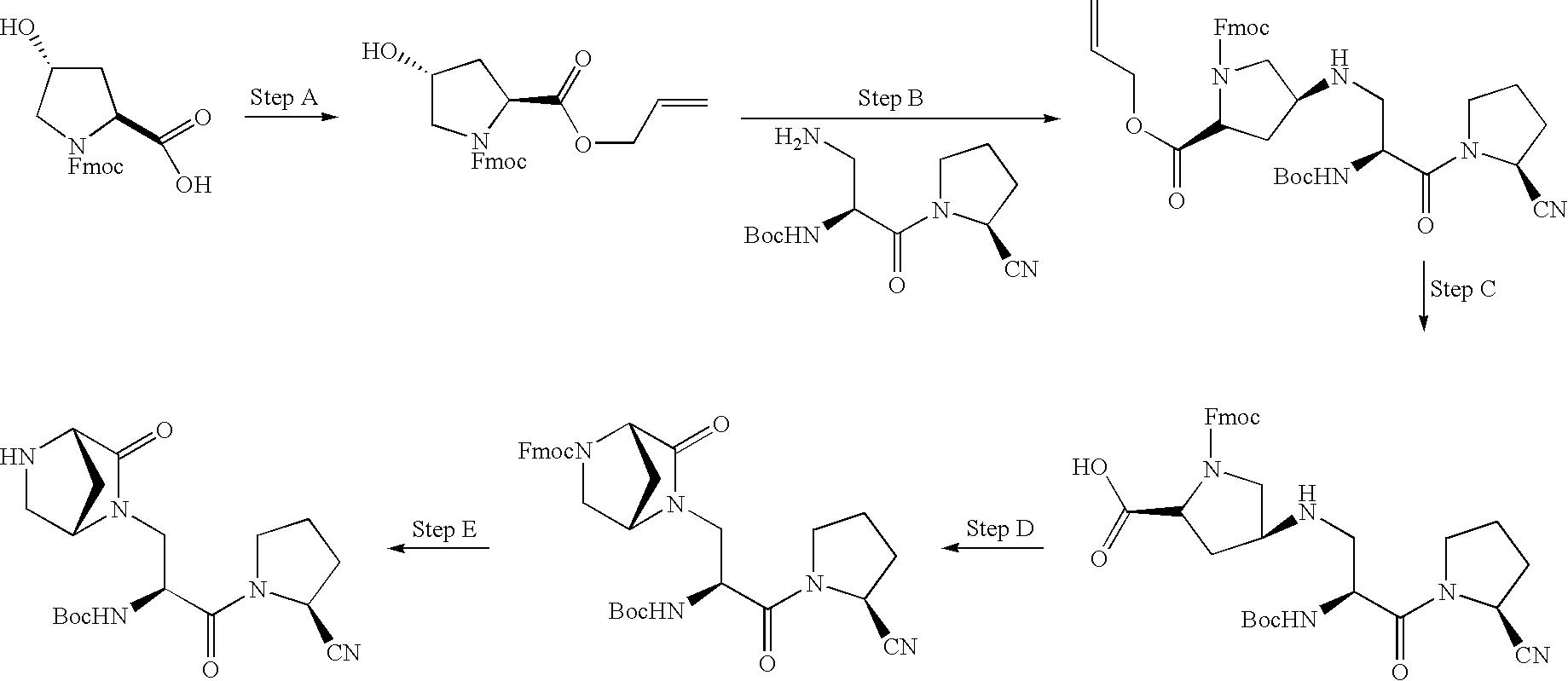 Figure US20100009961A1-20100114-C00231