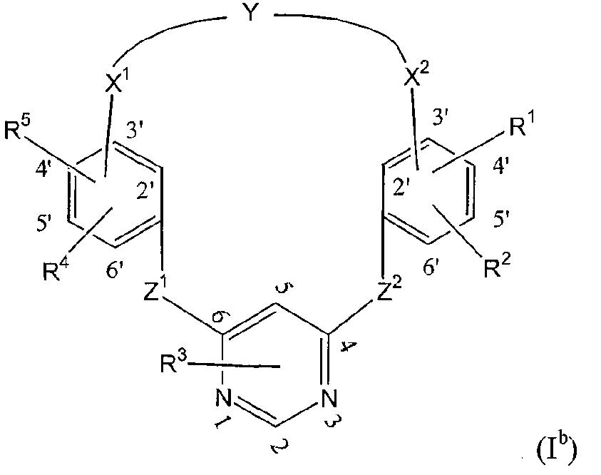 Figure 112013076183340-pct00128