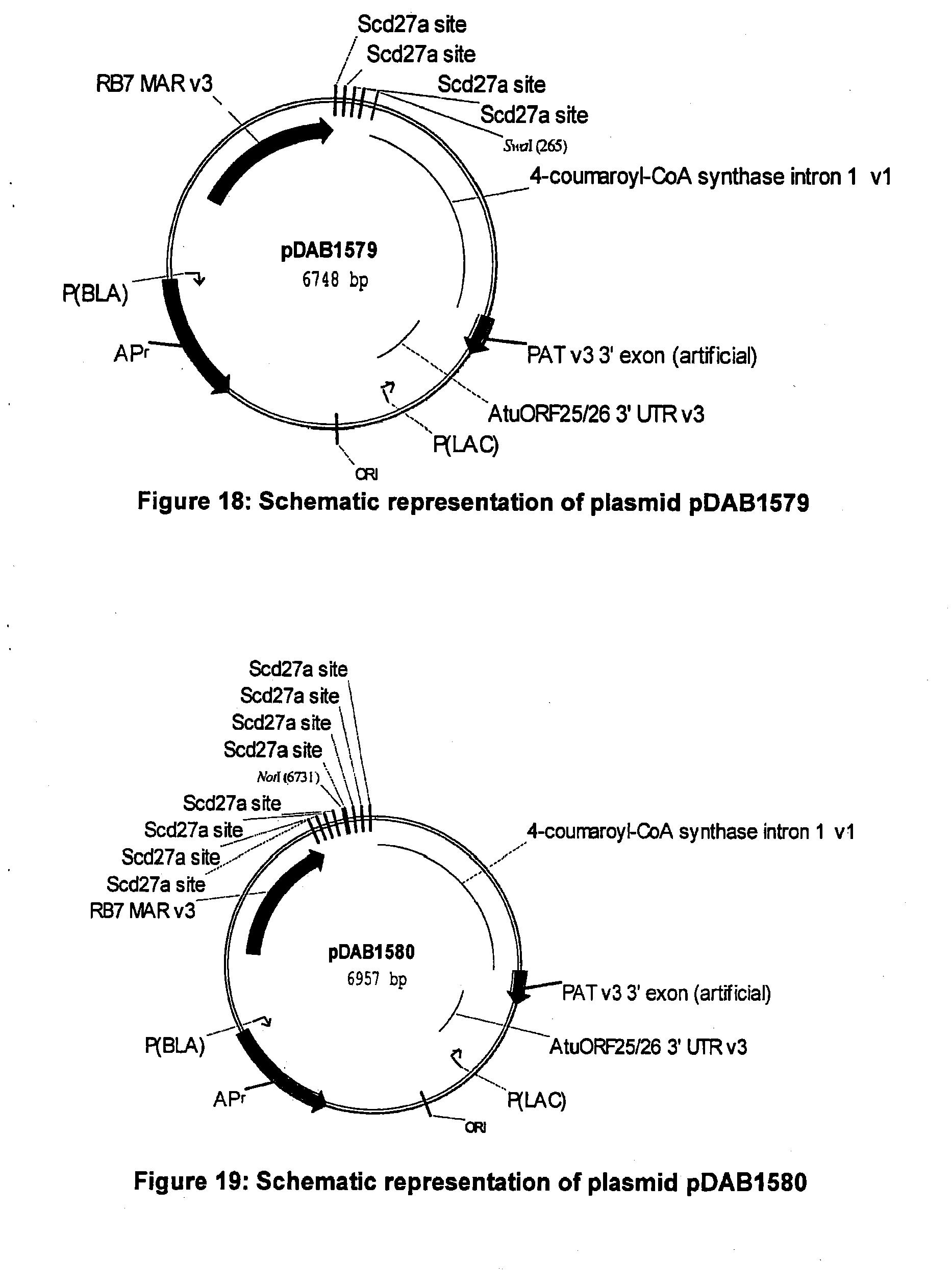 EP2415872A1 - Optimized non-canonical zinc finger proteins