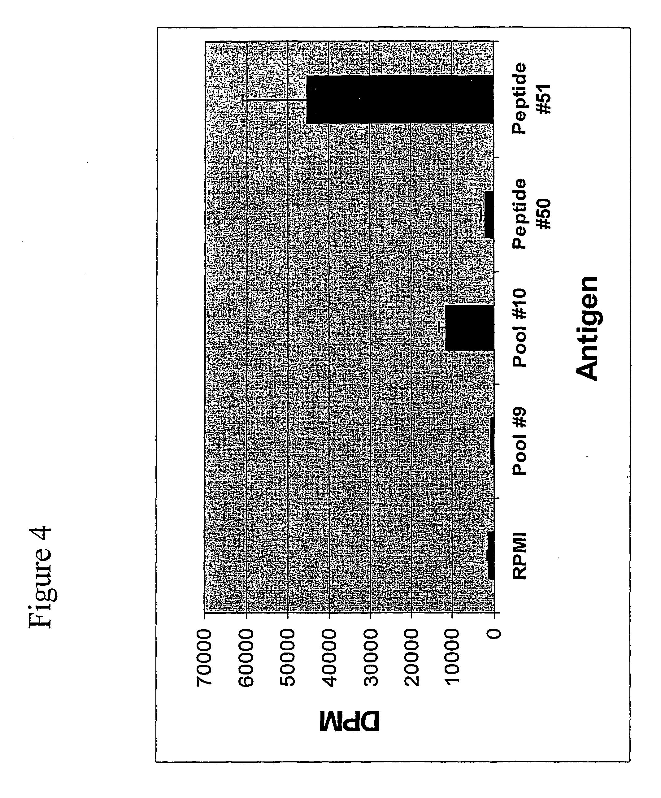 US7910109B2 - MHC class II epitopes of 5T4 antigen - Google