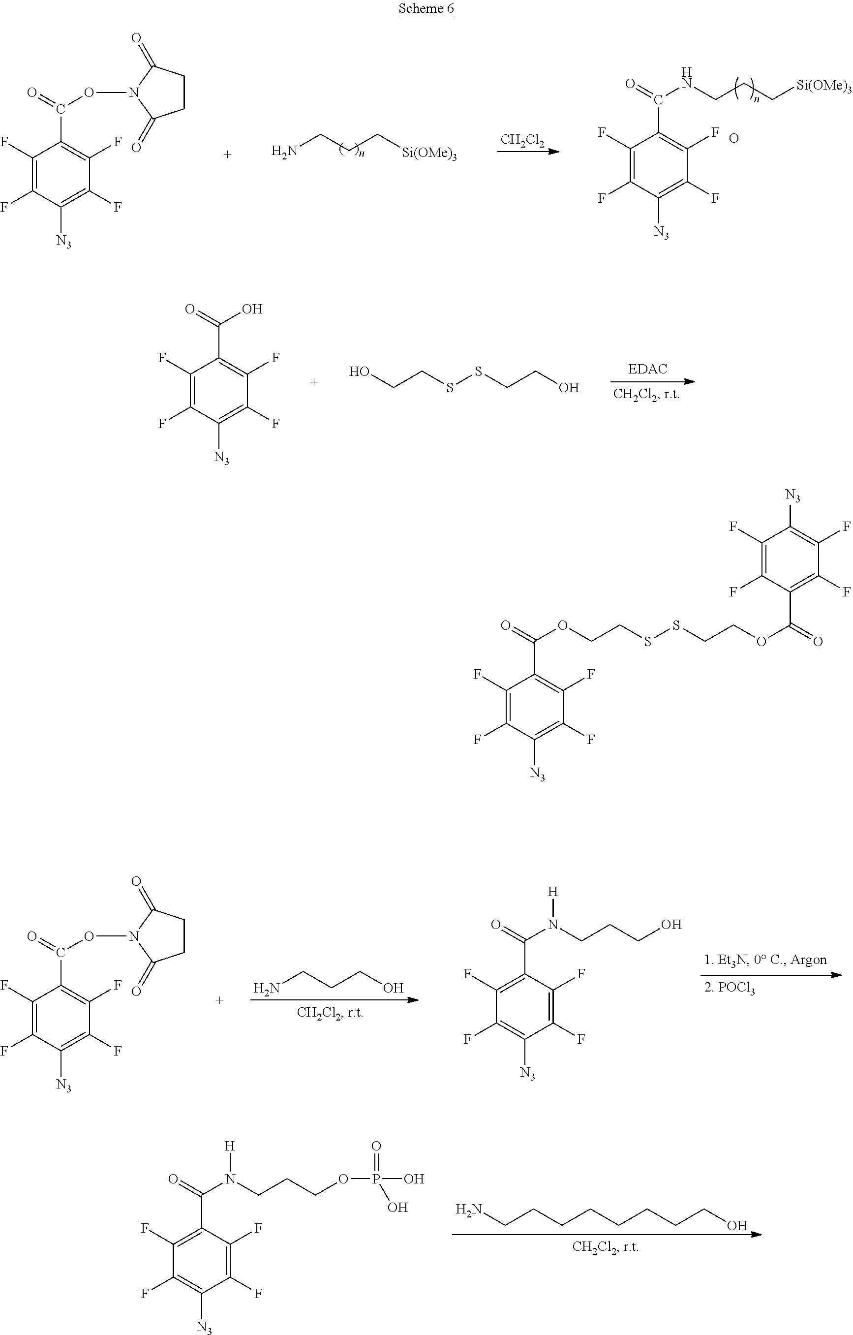 Figure US20100028559A1-20100204-C00007