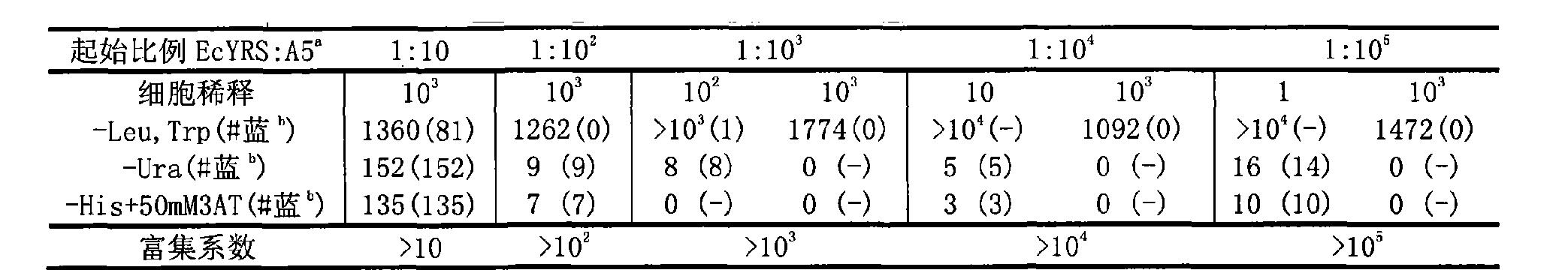 CN102618605A - Non-natural active amino acid genetic code