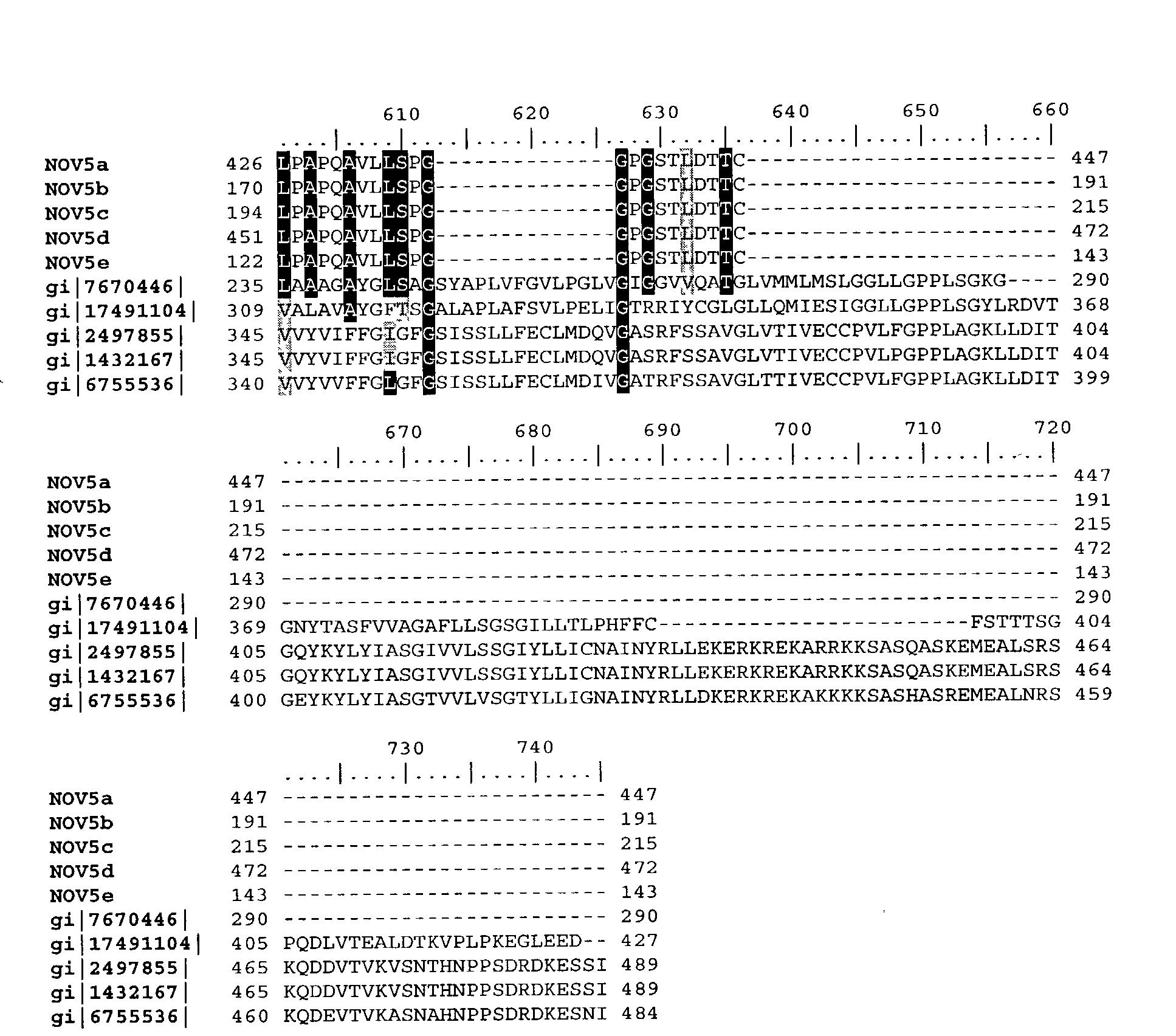 Figure US20040033493A1-20040219-P00012
